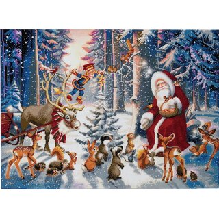Craft Buddy CAK-A54 - Framed Crystal Art Kit XXL - Christmas in the Forest