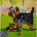 Craft Buddy CCK-A46 - Crystal Card Yorkshire Terrier Dogs